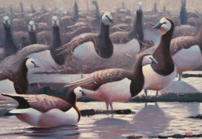 Expositie Wildlife in Museum Schoonewelle
